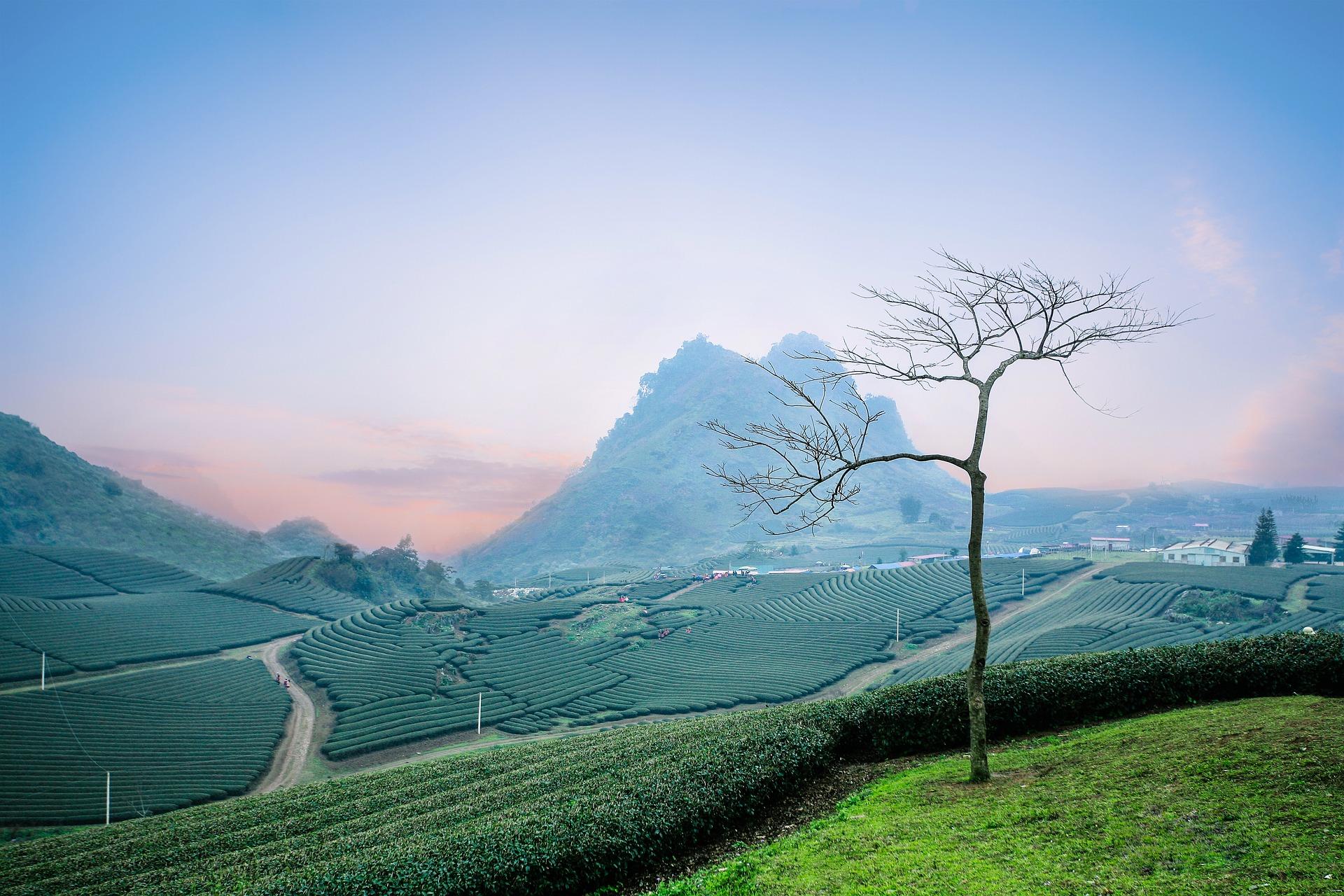 「カバラ生命の木を学ぶ~依存症とそれからの回復」の講座が大盛況でした