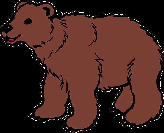 ローズベルのルノルマン☆プチ講座【15番 熊】